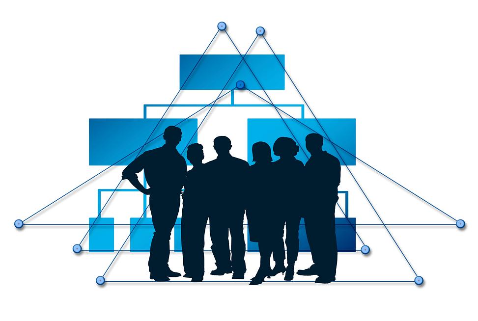 국제적 보험그룹 감독을 위한 공통감독체계