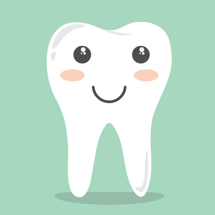치아보험 면책기간