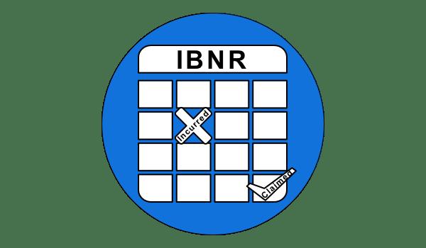 미보고발생손해액 IBNR