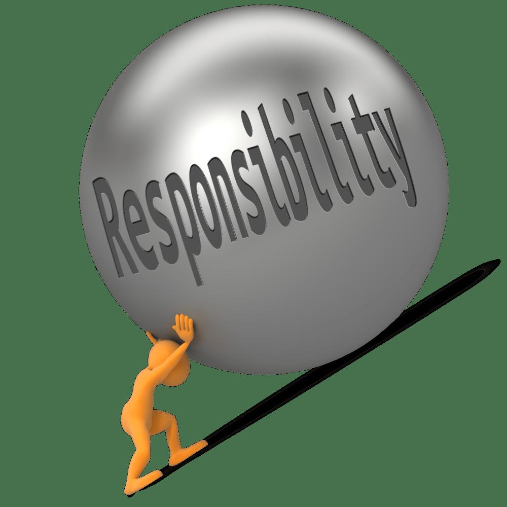 주책임자-보조책임자